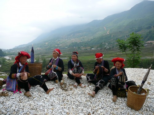 Red Dzao in Sapa