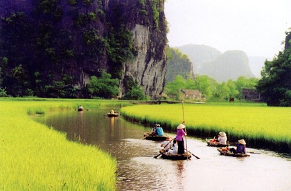 Tam Coc Rowing Boat